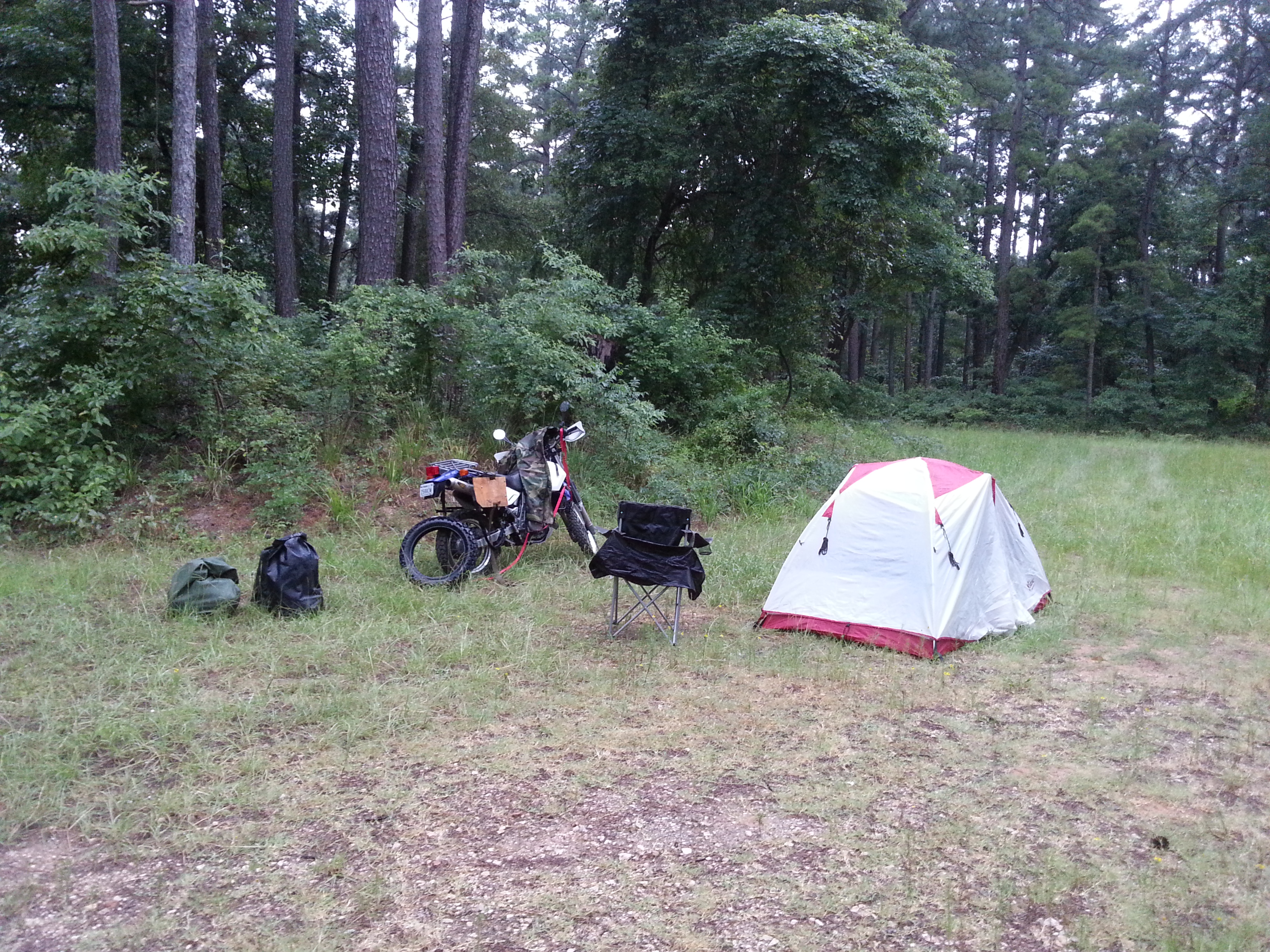 Campsite in the Davy Crockett National Forest (this is the morning after, I got there at night in the dark)