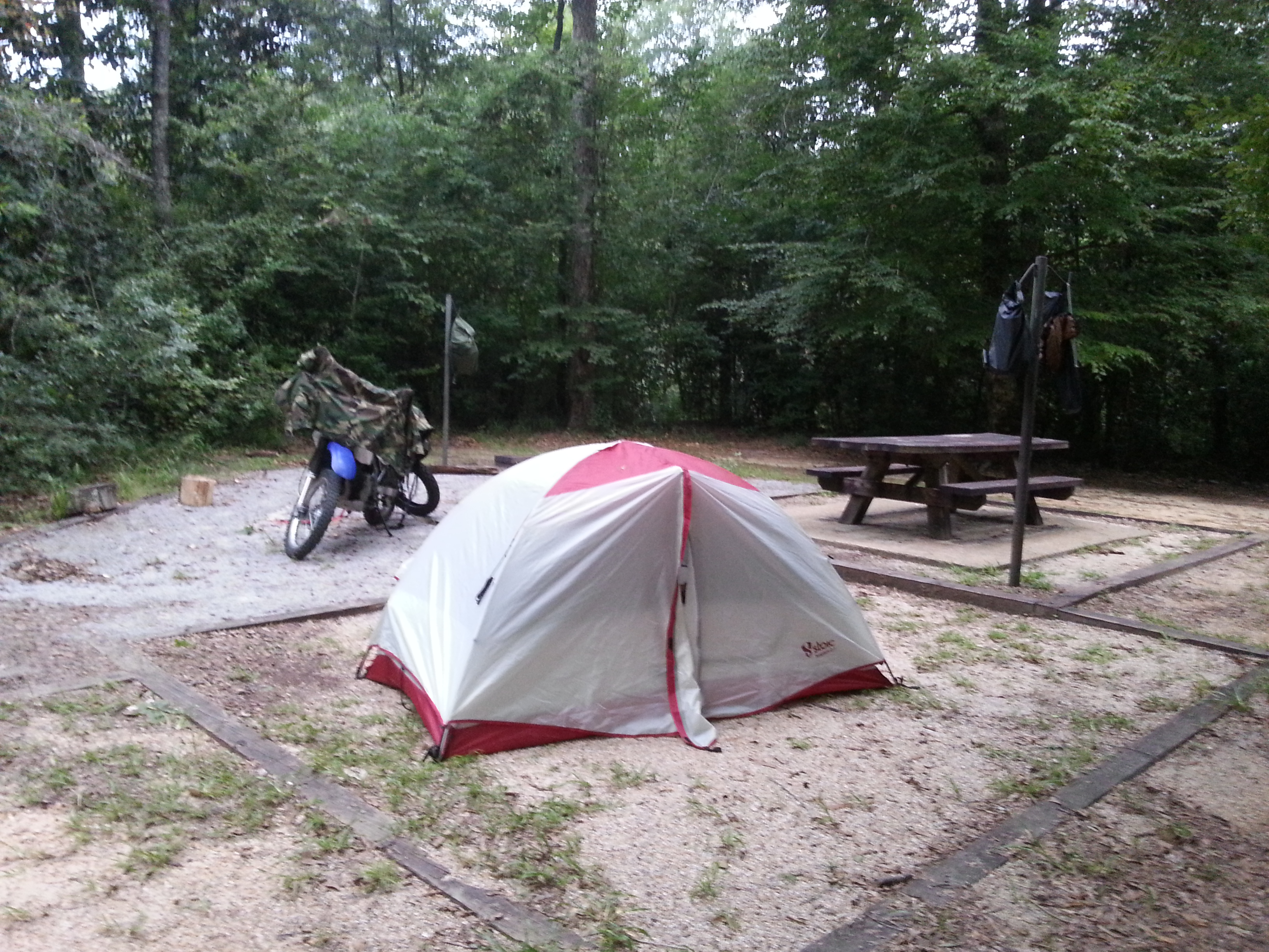 My campsite in the Desoto National Forest