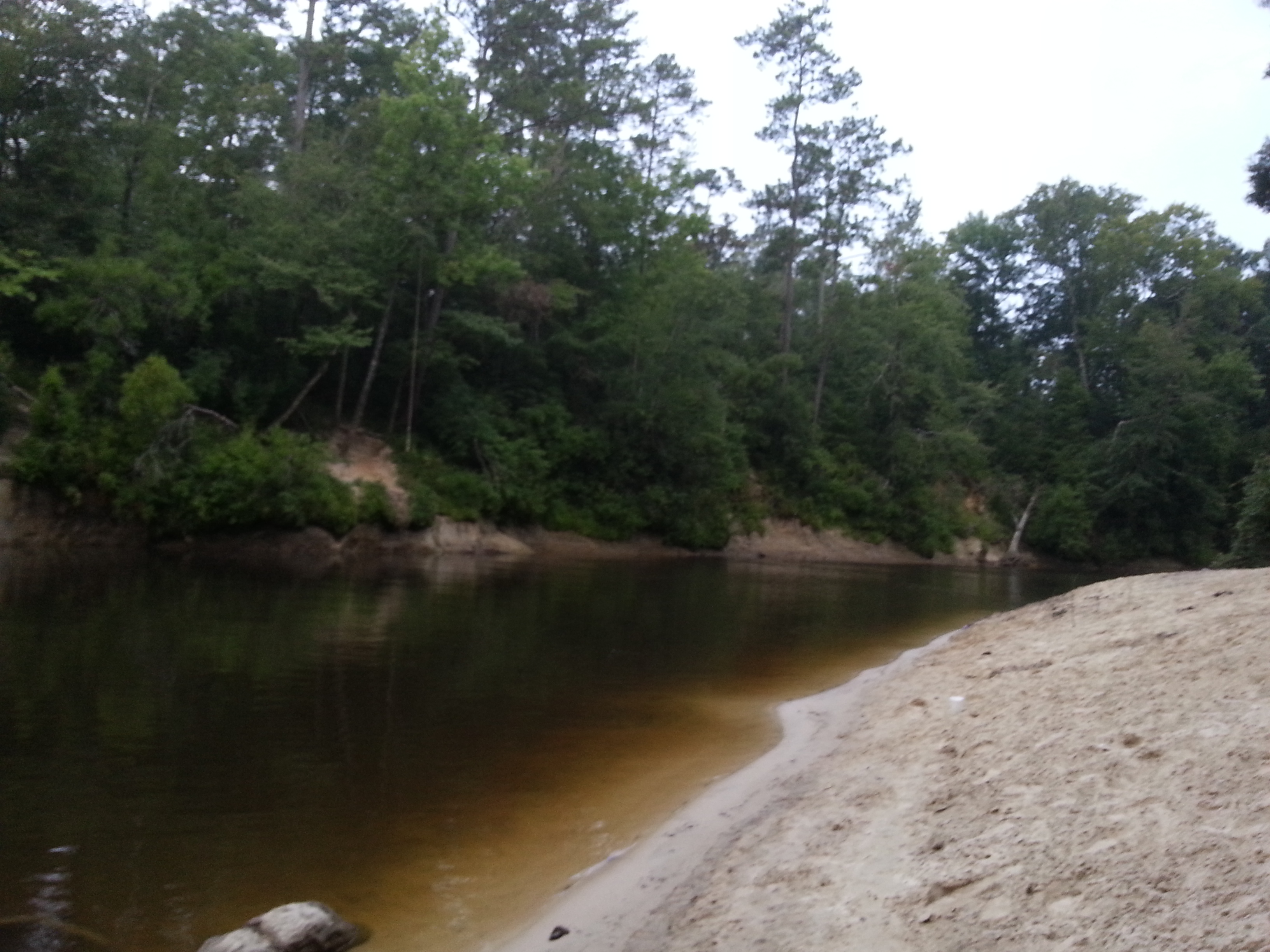 The creek right by my campground that apparently is a popular midnight swimming destination
