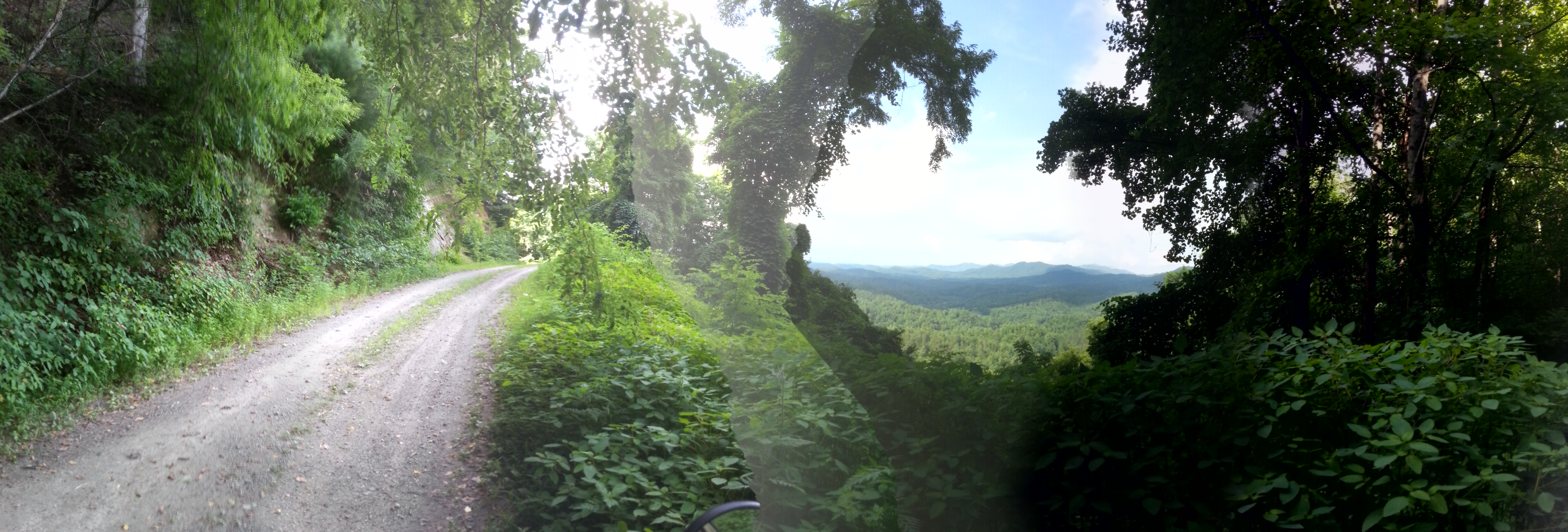 An attempt at a panoramic shot of the crazy trail I went up this afternoon, excuse the artifact in the middle
