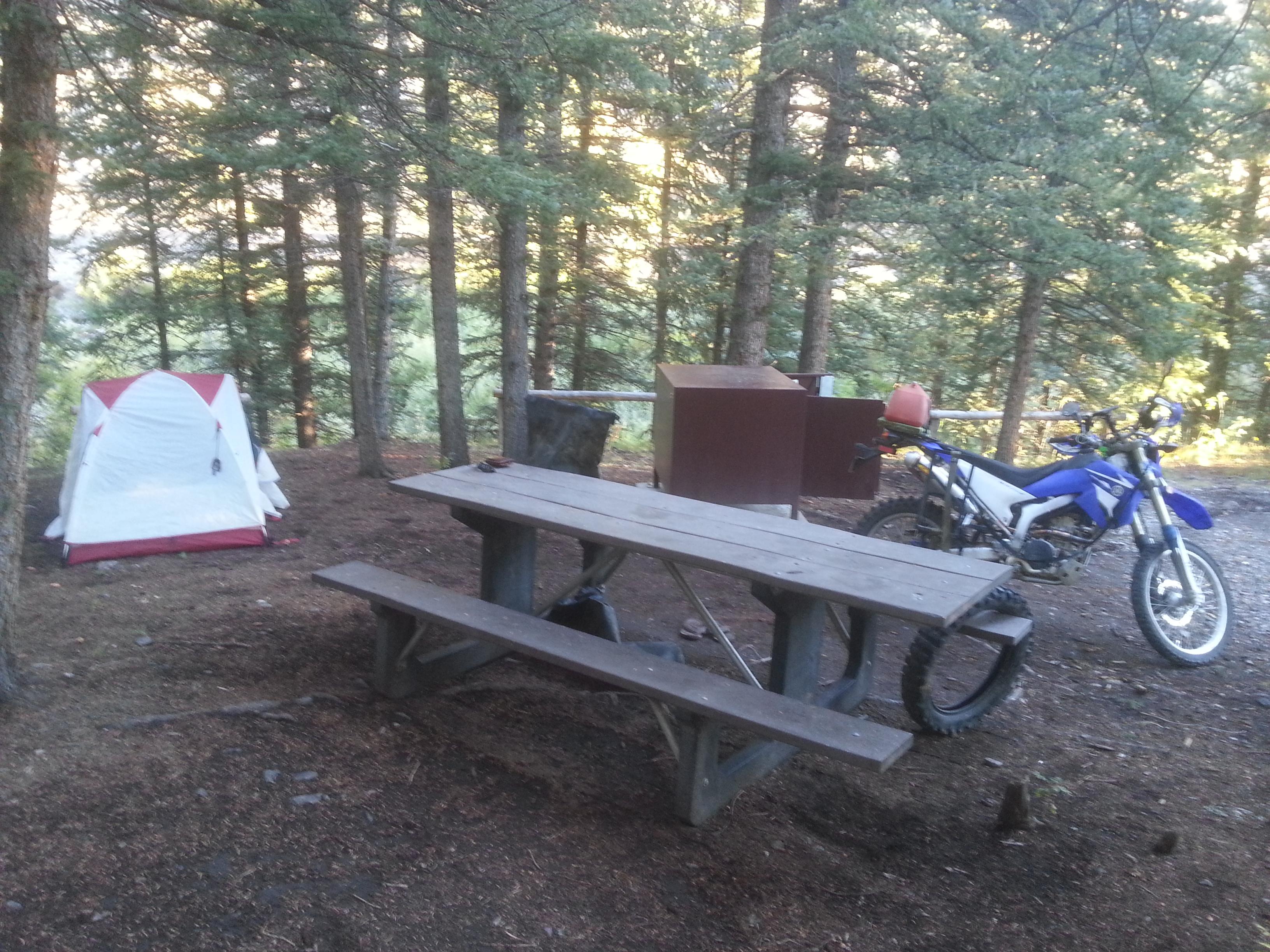 My camping spot at Mill Creek